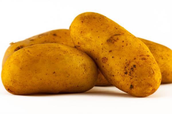 Kartoffeln Produktbild