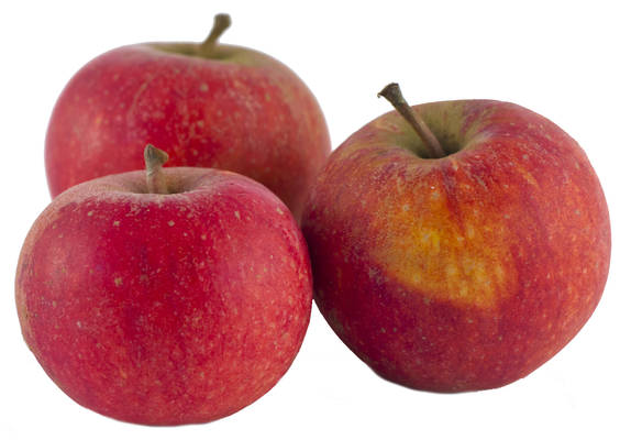 Apfel Cox Orange Produktbild