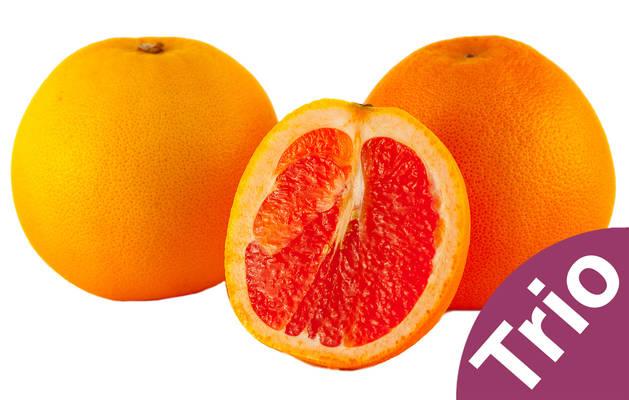 Grapefruit-Trio Produktbild