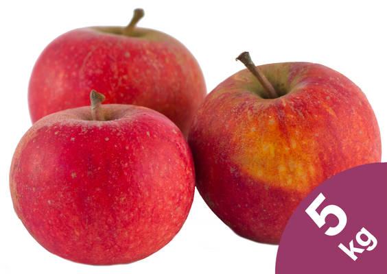 Apfel Cox Orange 5kg Produktbild