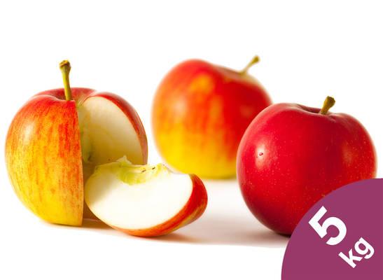 Apfel-Kiste 5kg Produktbild