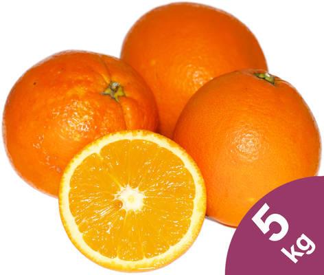 Orangen 5kg Produktbild