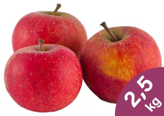 Apfel Cox Orange 2,5kg Produktbild