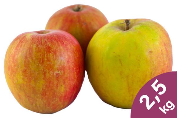 Apfel Holsteiner Cox 2,5kg Produktbild