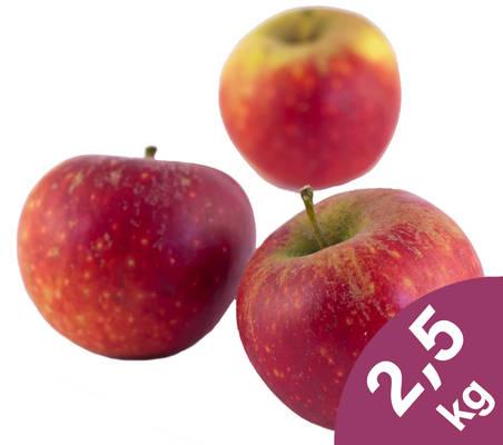 Apfel Ingrid Marie 2,5kg Produktbild