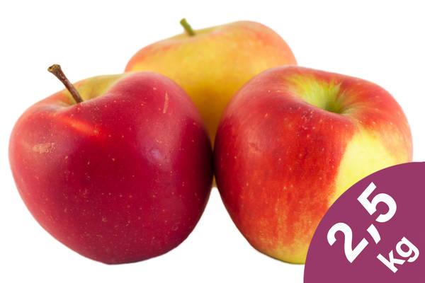 Apfel Santana 2,5kg Produktbild