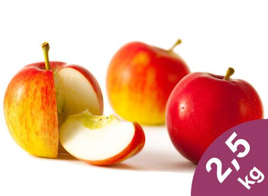 Apfel-Tüte 2,5kg Produktbild