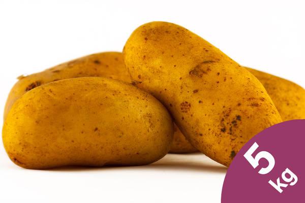 Kartoffeln  5kg Produktbild