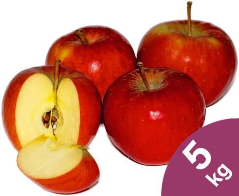 Apfel Topaz 5kg Produktbild