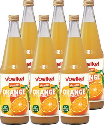 Orangensaft Demeter 6er Produktbild