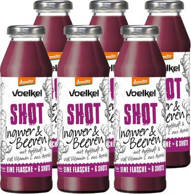 Shot Ingwer & Beeren 6er Produktbild